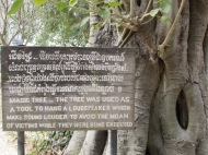 The Magic Tree, Killing Fields, Phnom Penh, Cambodia
