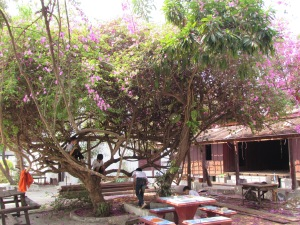 Inside a Temple, Luang Prabang, Lao