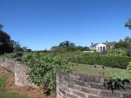 Boone Hall Plantation, Charleston