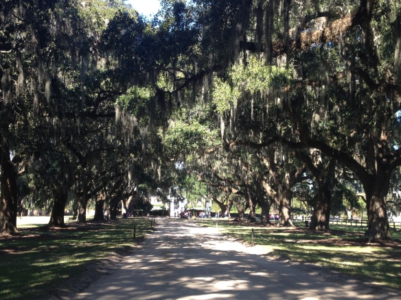 Boone Hall Plantation, Charleston